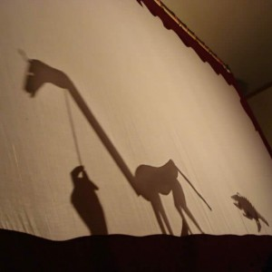 Giraffe Shadow