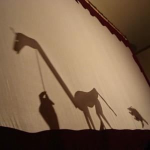 Giraffe Shadow